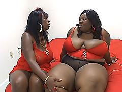 Hot black BBW lesbians taste each other