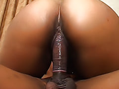 Gorgeous black girl likes to sit on dicks until they're balls deep inside of her soaking wet ebony fuck hole